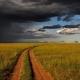 Clima del Kenya: quali sono i mesi migliori?